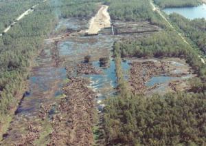 Swamp before Jazzland Rebuild